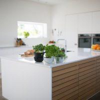 Tipovi kuhinje - troskovniknet